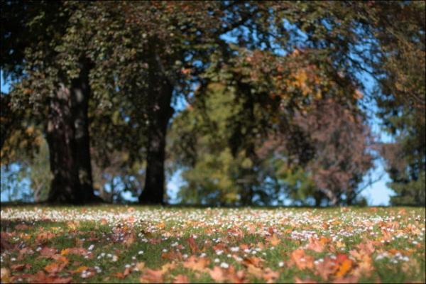 GALERIE – Krásy podzimu