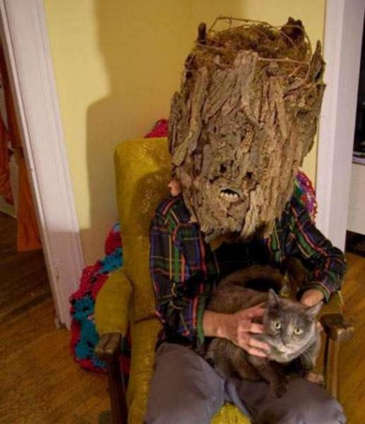 GALERIE - Záhadný svět koček