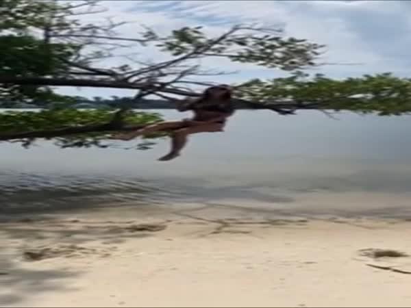 Strom ji nechtěl pustit!