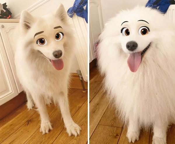 GALERIE – Psi jako hrdinové od Disney