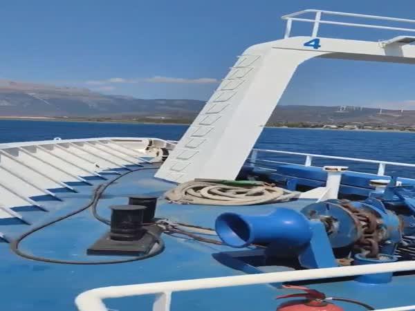 Dítě na jednorožci v moři
