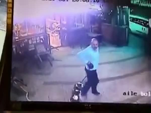 Útok agresivní kočky