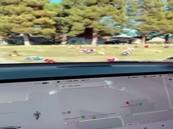 Tesla na hřbitově viděla ducha