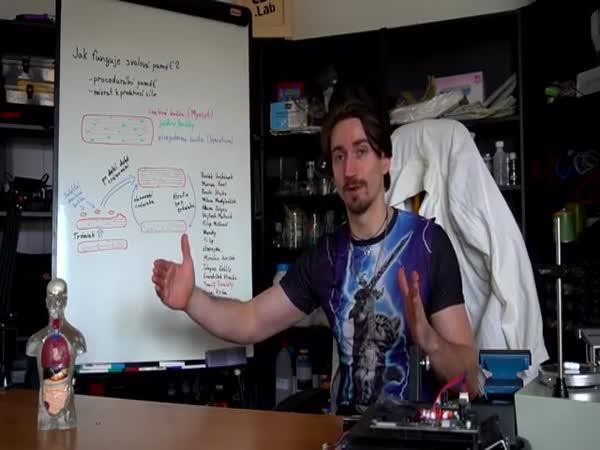 Jak funguje svalová paměť?