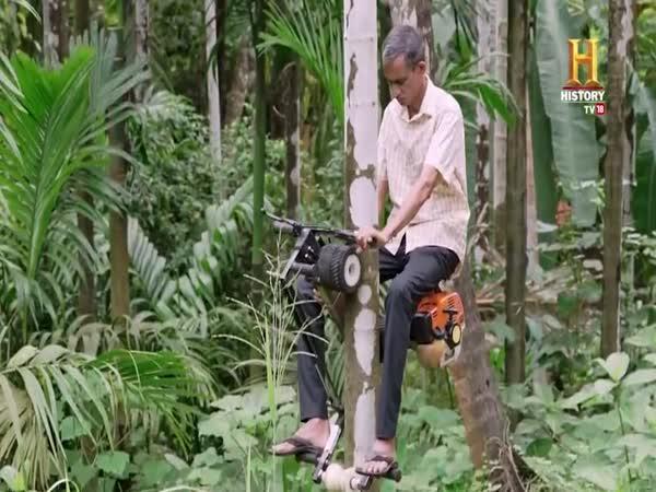 Vytvořil palmový skútr
