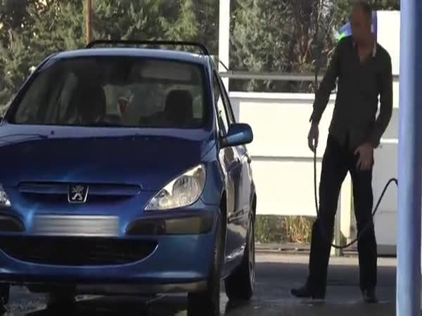 Obří holub ničí auto